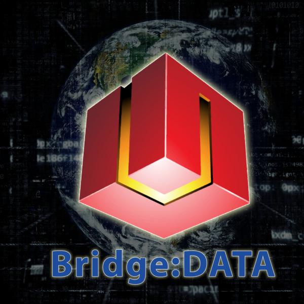 Wordpress For Unity Bridge Data